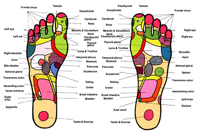 reflexology-dan-prater-nd-naturopathic-medicine-21st-century-total-wellness-cedar-creek-indiana