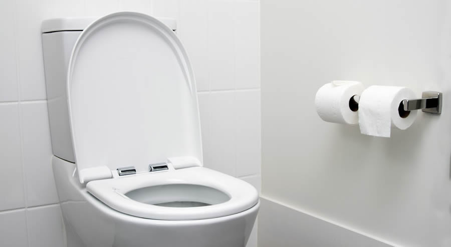 Does Your Poop Sink or Float?